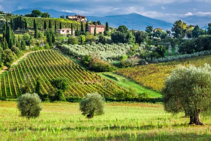 Essence of Tuscany by bike