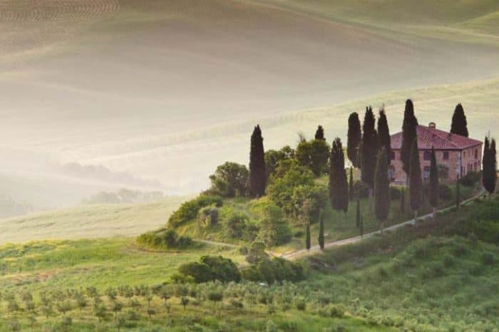 Private: Full-day Tuscan excursion from Florence to Montepulciano, Montalcino and Pienza.